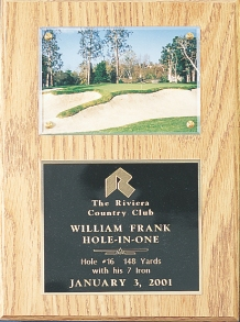 HOLE-IN-ONE PLAQUE--ITEM#541